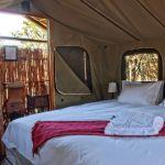 Room at Shindzela Tented Safari Camp