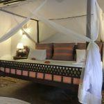 Kinondo Kwetu: Stay 5 nights for the price of 4