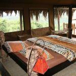 Crater Forest Tented Camp
