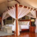 Zambezi Sands River Camp: Stay 3 nights for the price of 2