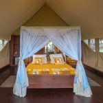 Lake Ndutu Tented Lodge