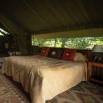 Governors Camp Collection 4 Night Offer